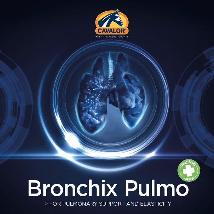 Bronchix Pulmo - A revolutionary pulmonary product