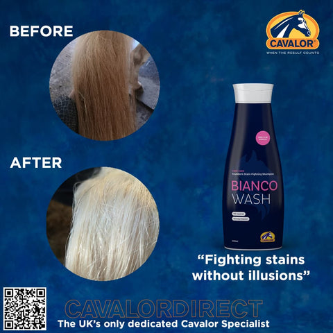 Cavalor Bianco Wash Example From Cavalor Direct