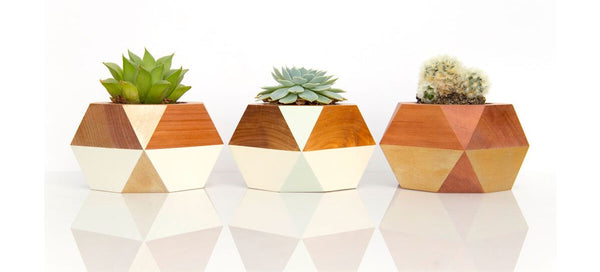 Gwyneth Hulse timber geometric pots
