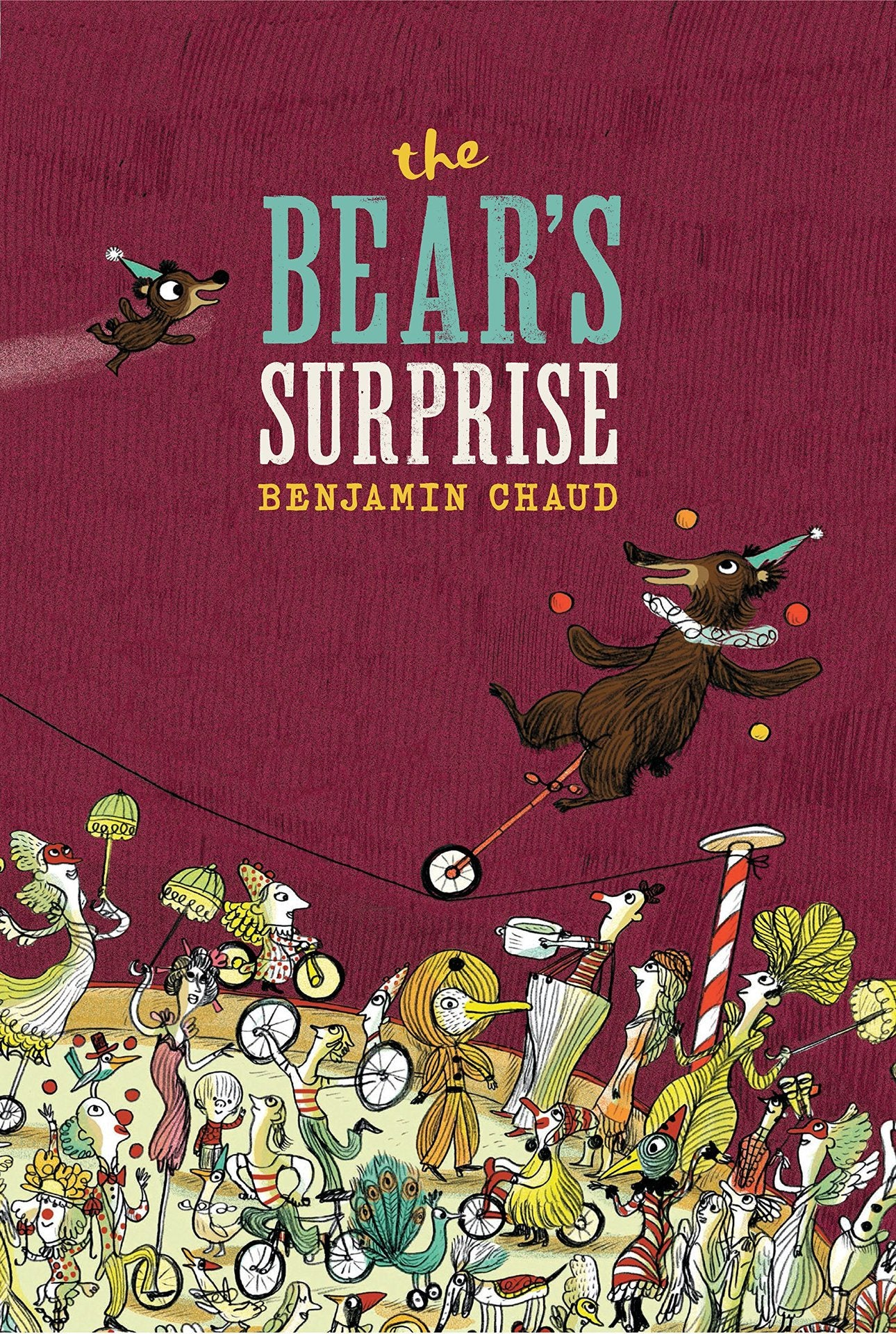 The Bears Surprise Book