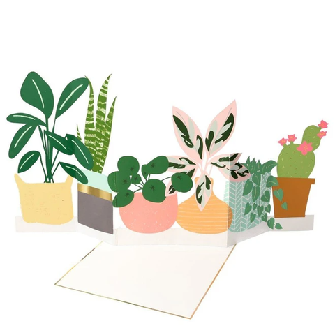Potted Plant Concertina Card