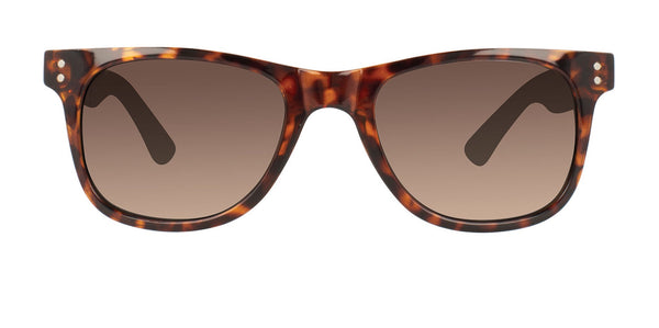 Voyager Sunglasses - Deep Chocolate Tort/Green