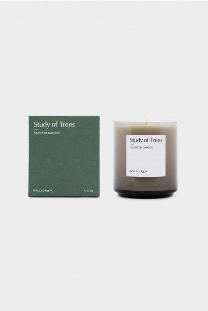 Scented Candle - Study of Trees