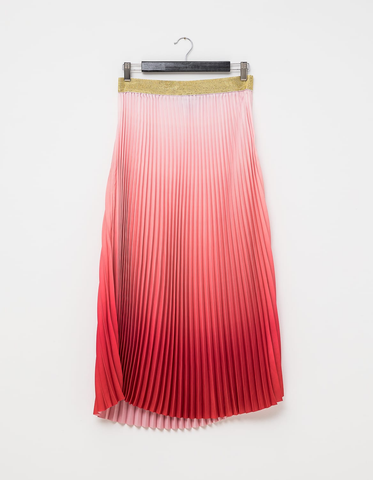 Ombre Skirt - Rose & Flame