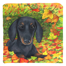 Load image into Gallery viewer, Dog 142 Dachshund Throw Pillow