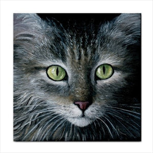 Cat 478 Ceramic Tile