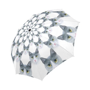 cat 611 Umbrella