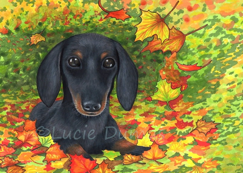 Dog 142 Dachshund Art Print