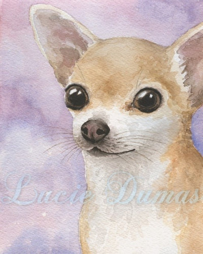 Dog 95 Chihuahua small Art print