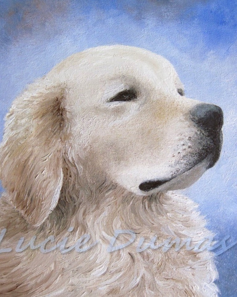 Dog 98 Golden Retriever small Art print