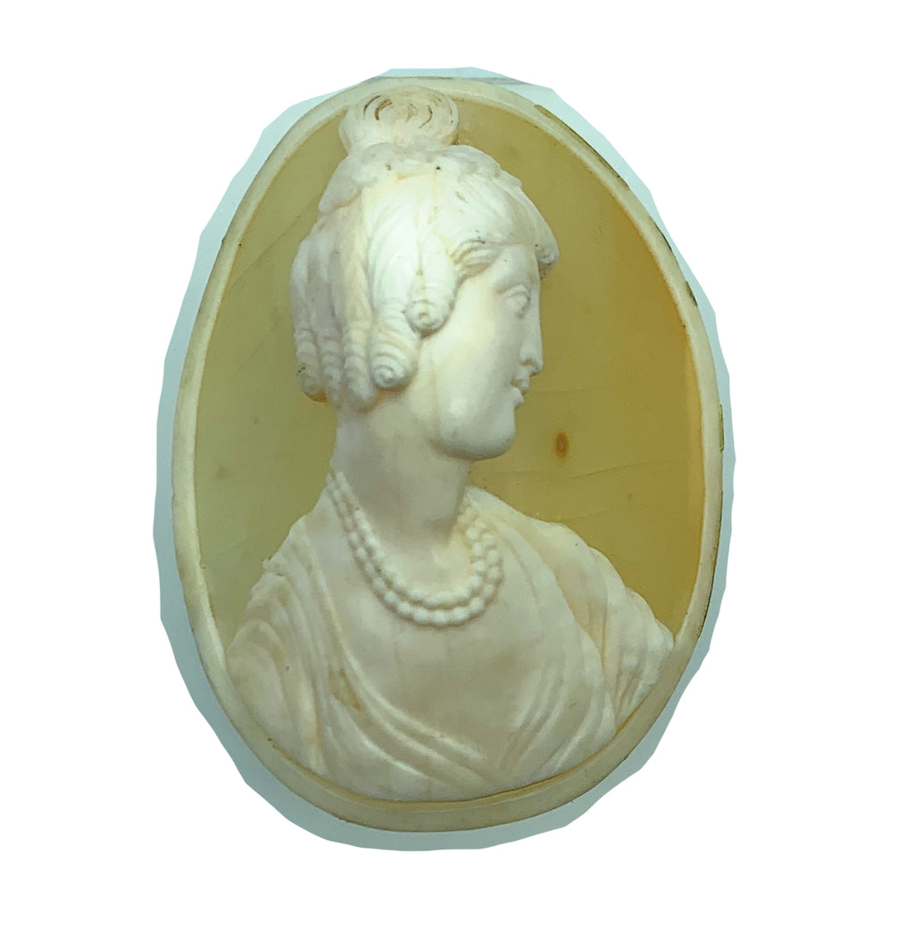 Antique Victorian Conch Shell Lady Cameo