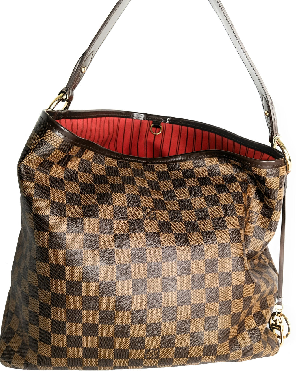 Louis Vuitton Damier Ebene Delightful Hobo PM