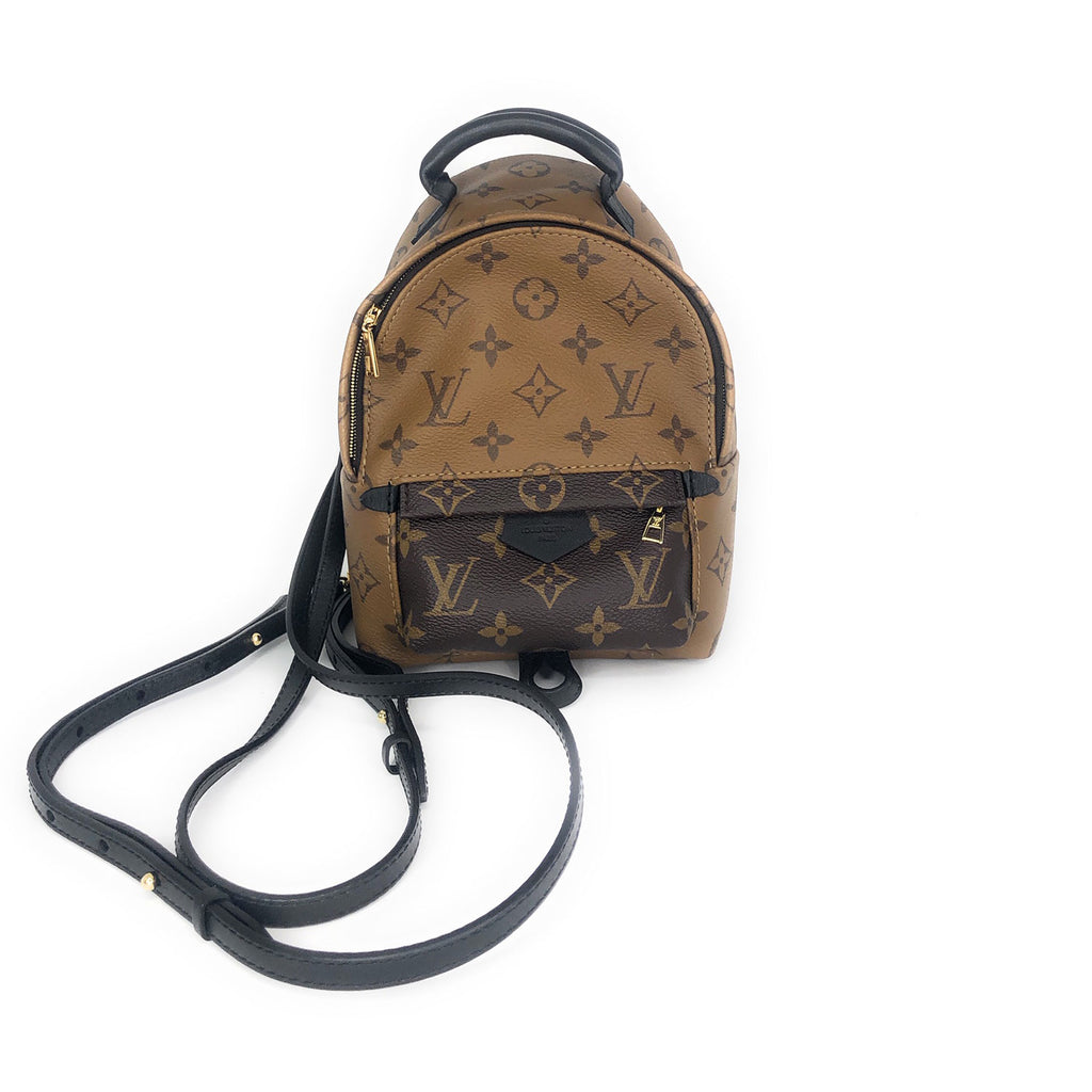 Louis Vuitton Palm Springs Reverse Monogram Backpack