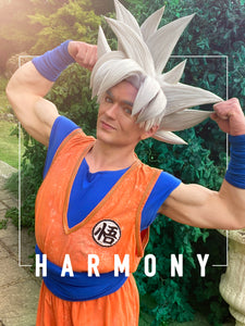 Harmony In All Things: An Ultra Instinct Life