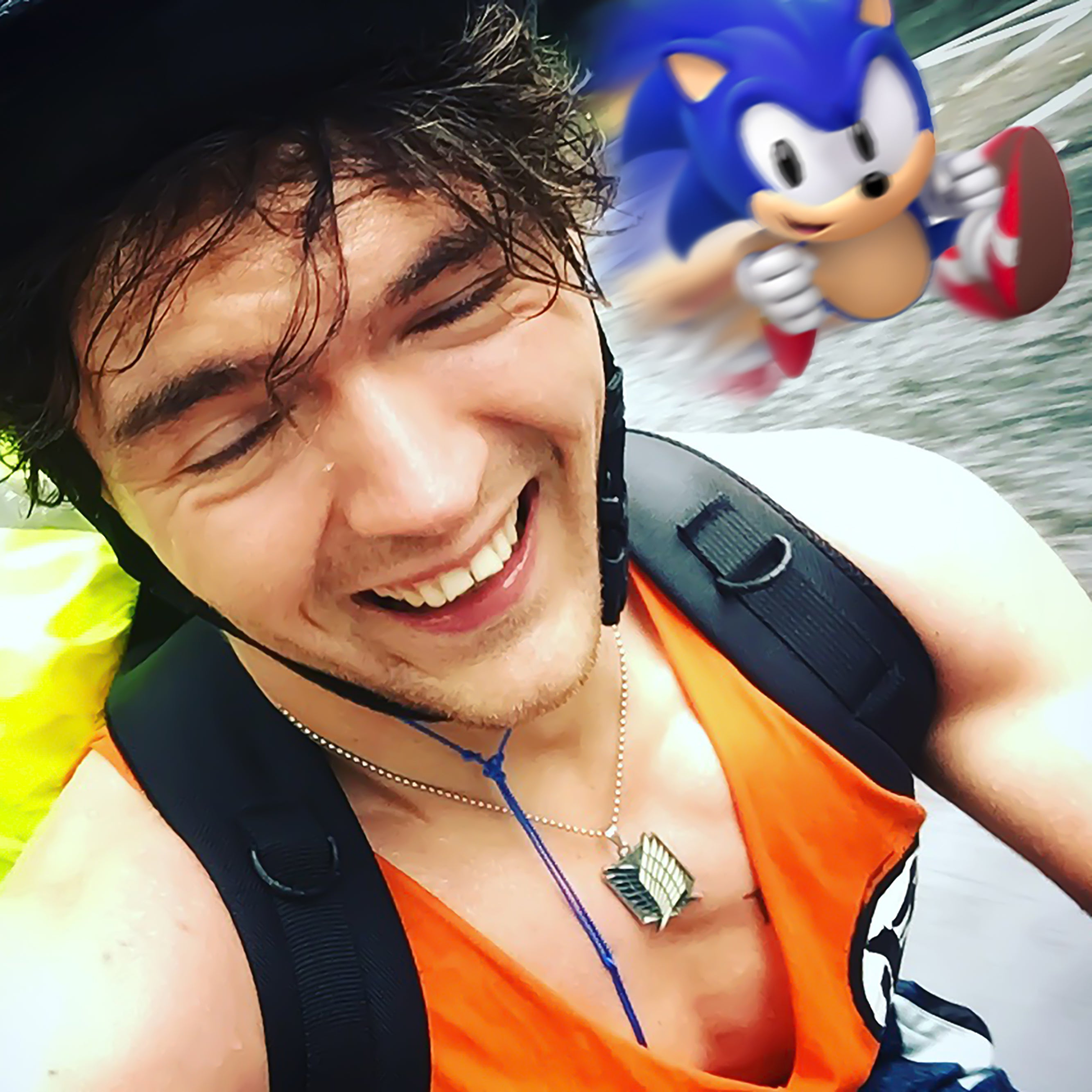 What speed-running Sonic the hedgehog taught me about fitness