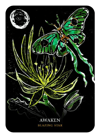 Flowers of the Night Oracle Oracle Kit