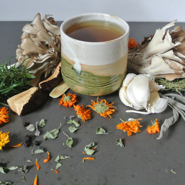 HERBAL BROTH RECIPE
