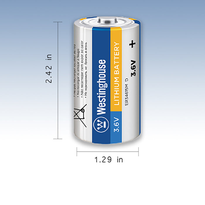 ER34615 D size 3.6V Lithium Primary Battery for Specialized Devices