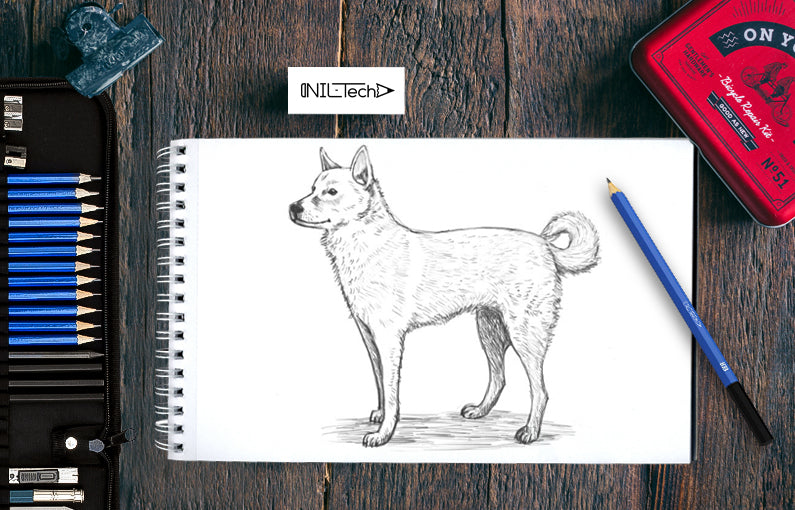 The easy way to draw a Dog step by step