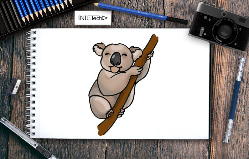 Koala Drawing – Step by Step