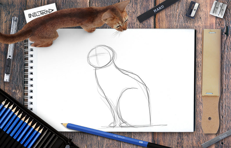 How to draw Cat step by step tutorial