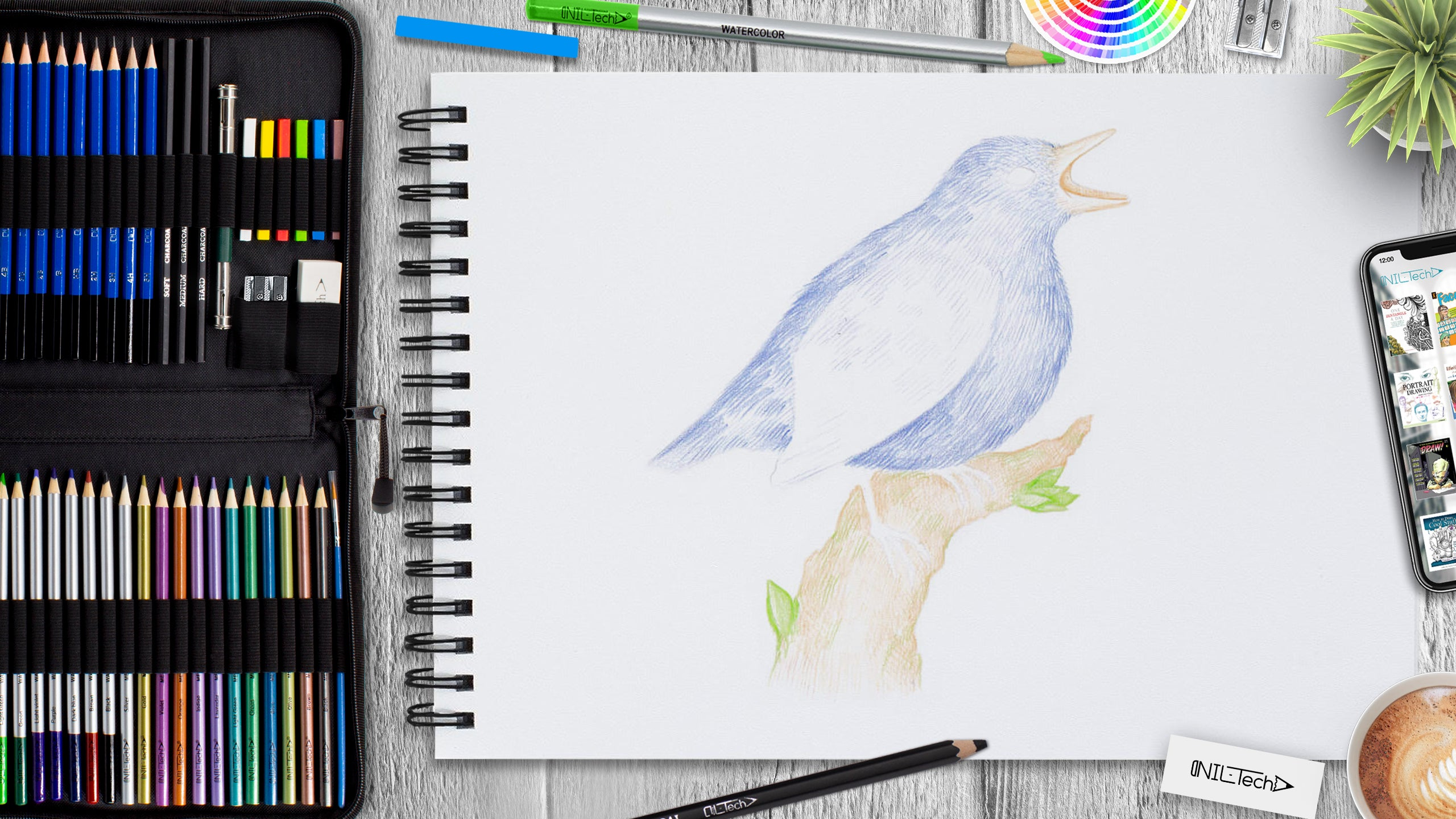 learn how to draw a bird step by step