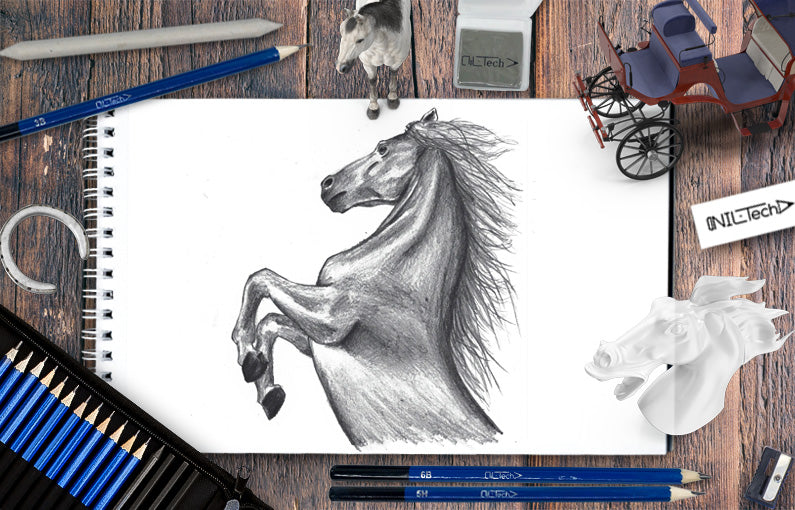 steps to draw a horse
