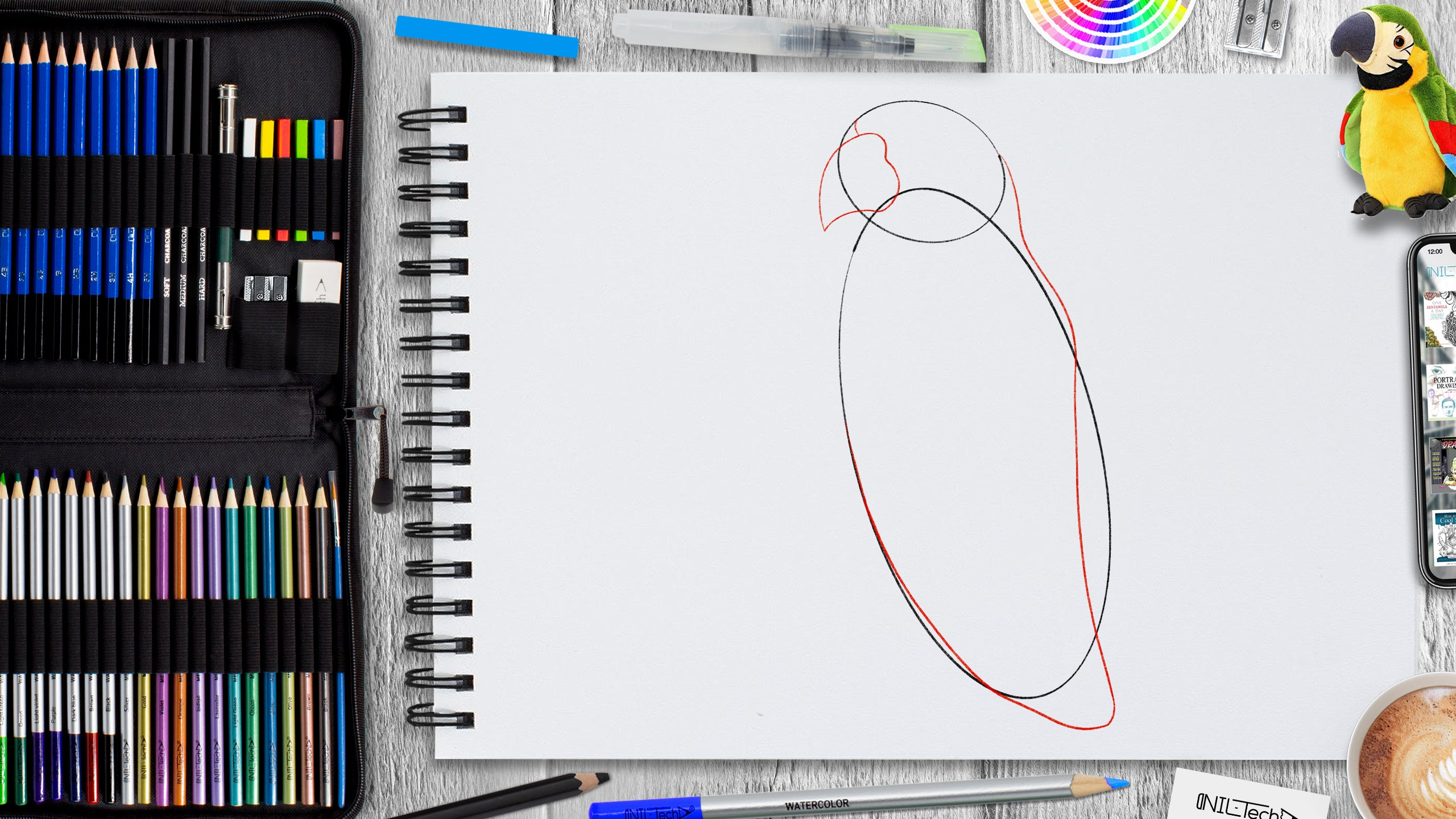 how to draw parrot