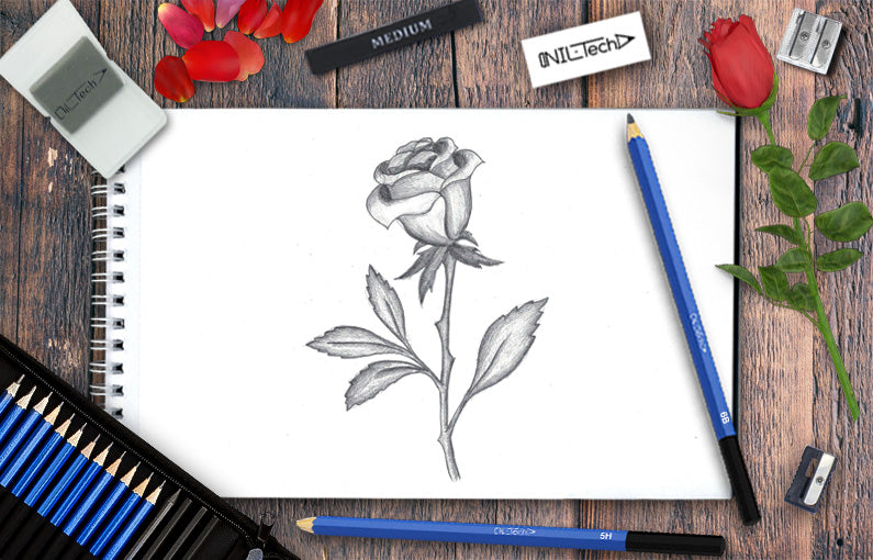 How to draw a rose easy sketches