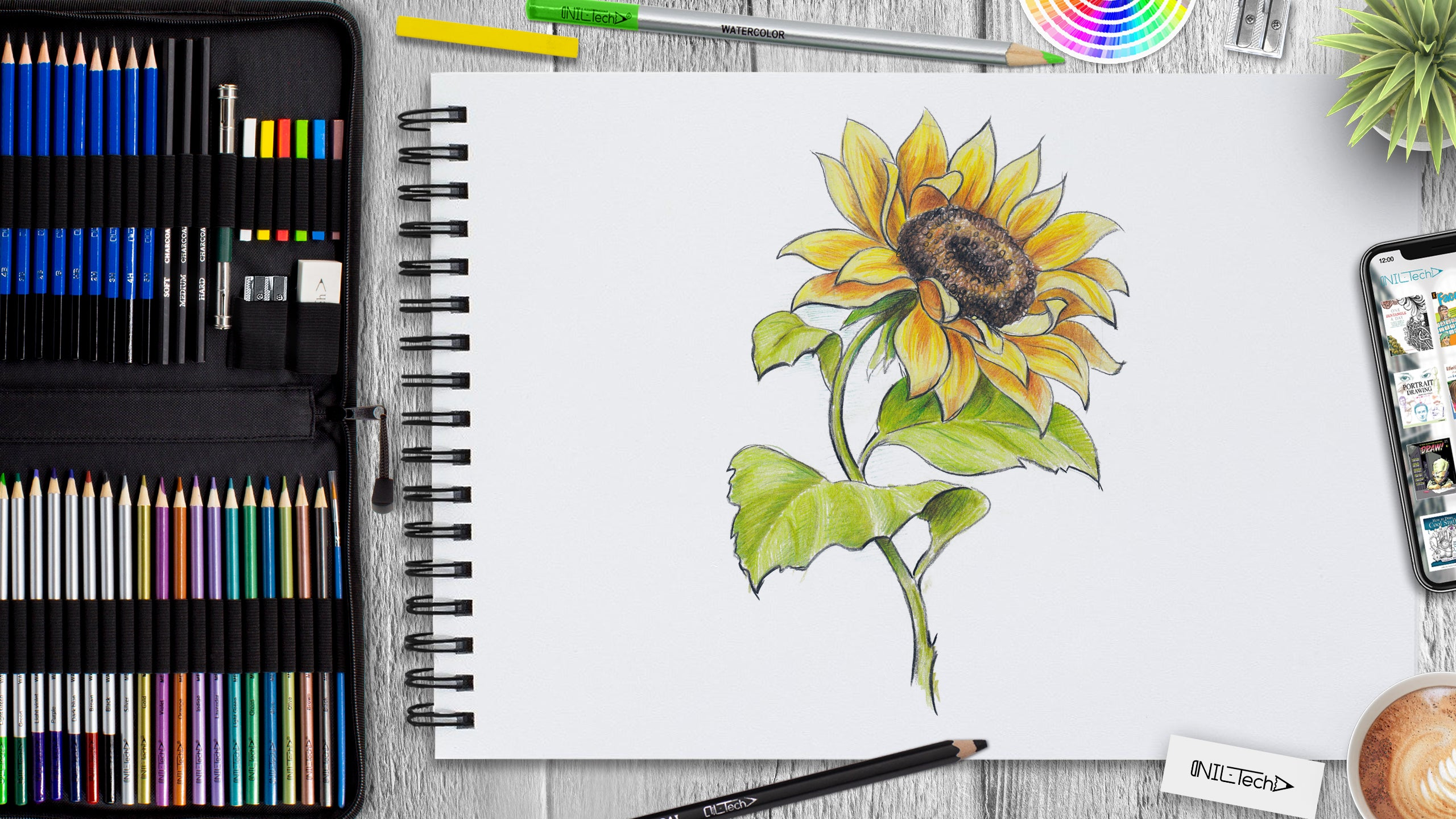 learn to draw sunflower step by step