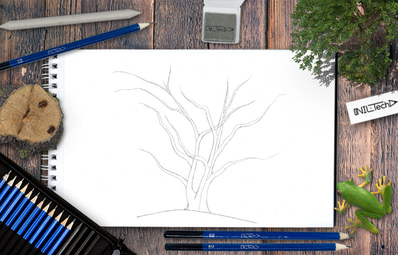 How to draw a Tree step by step tutorial