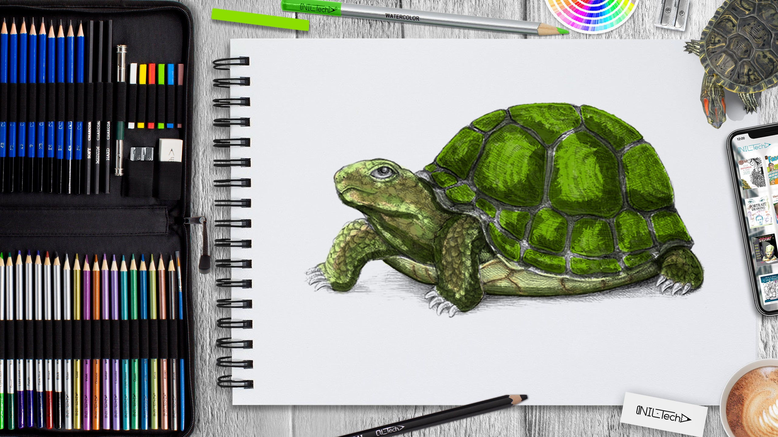 turtle step by step drawing turtle