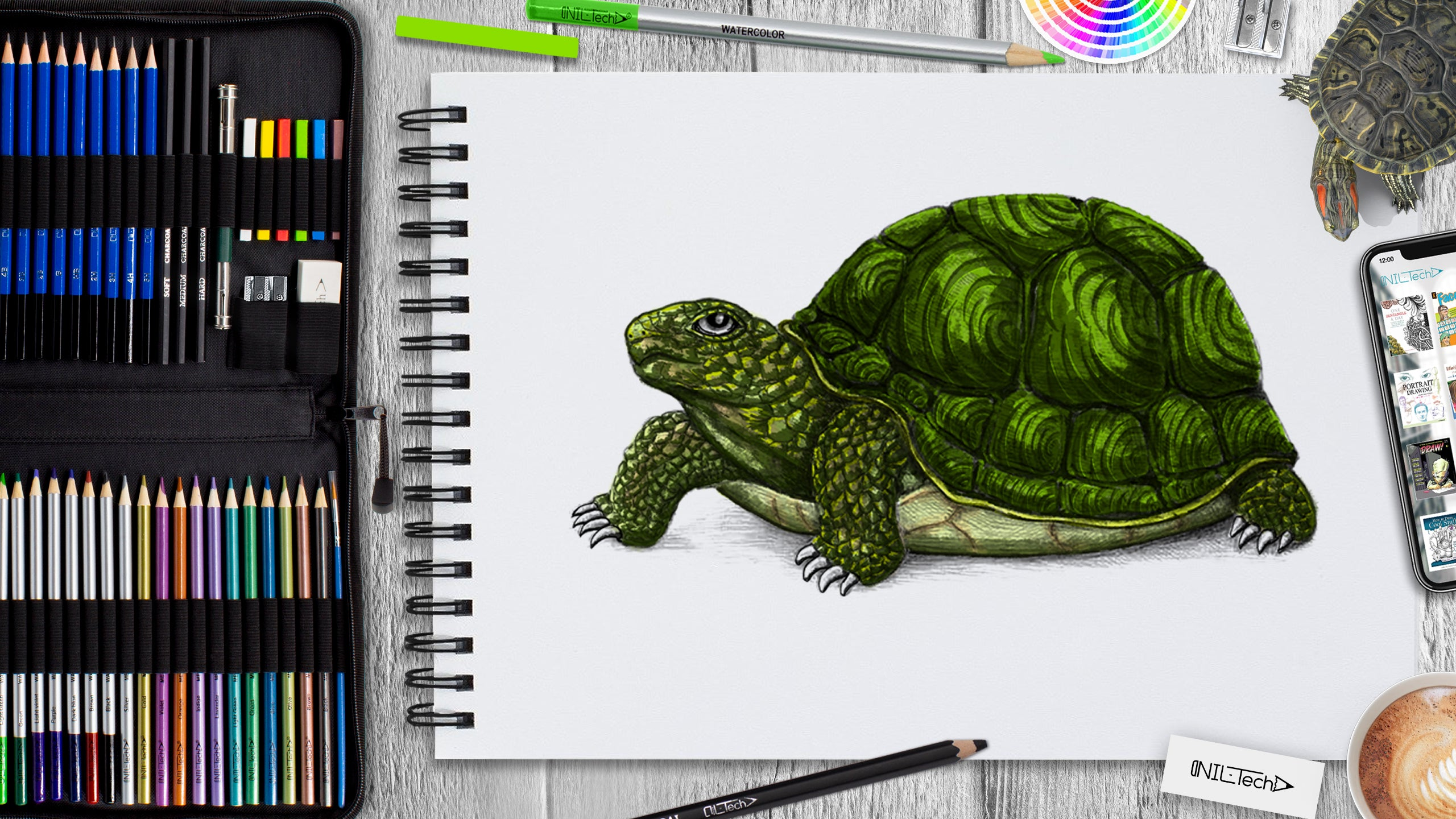 how to draw turtle step by step