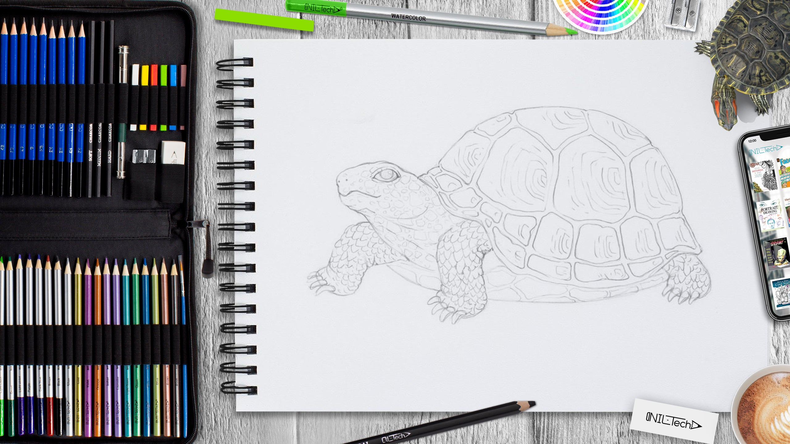 drawing animal step by step
