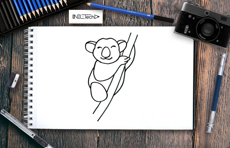 Koala Drawing Step by Step