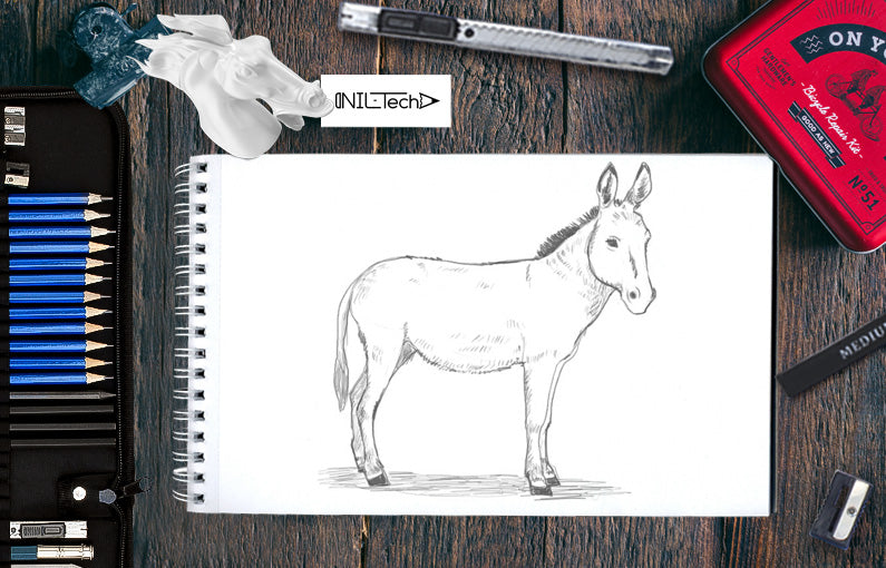 How to draw Donkey step by step tutorial