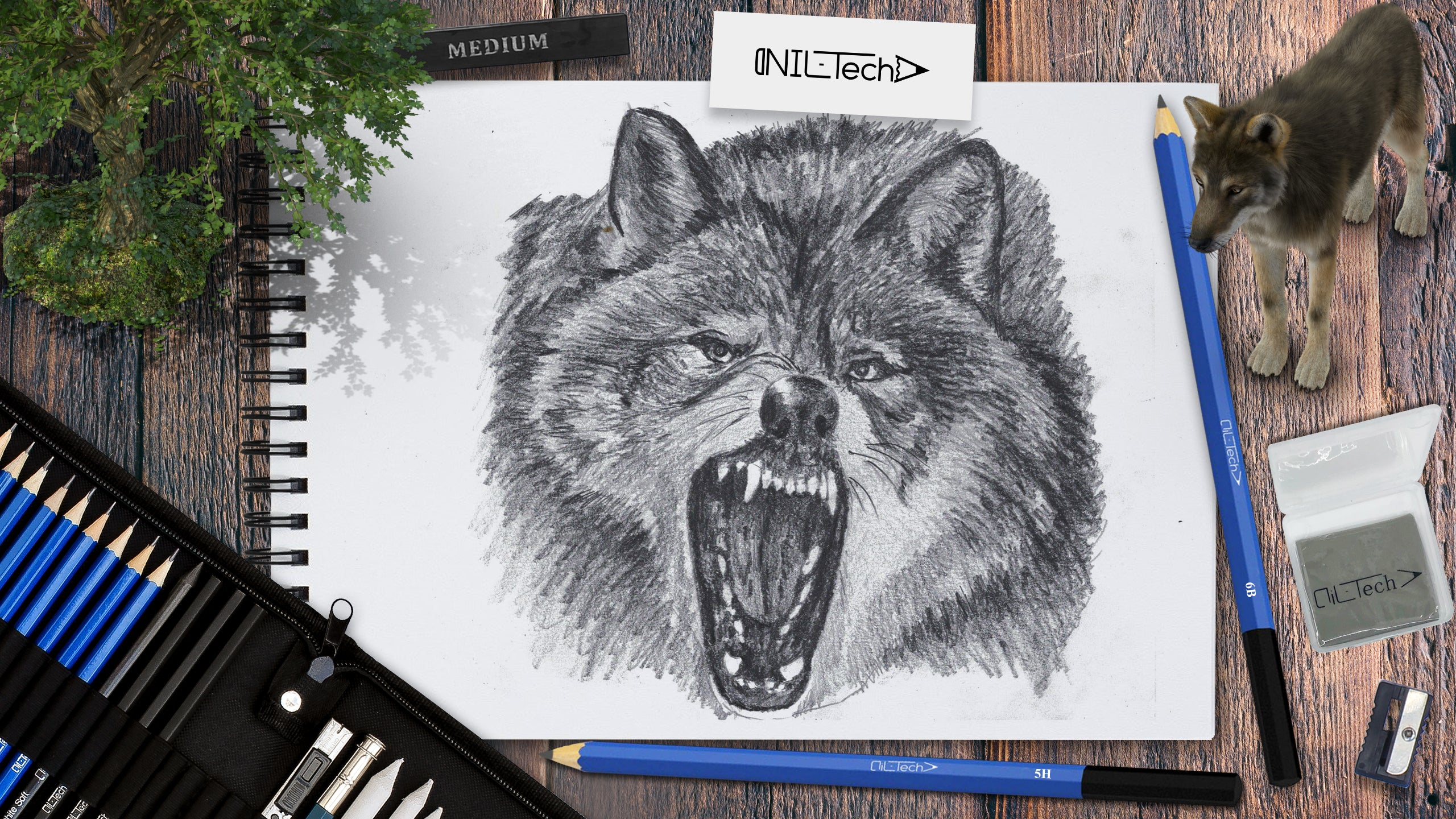 how to draw a wolf for beginners