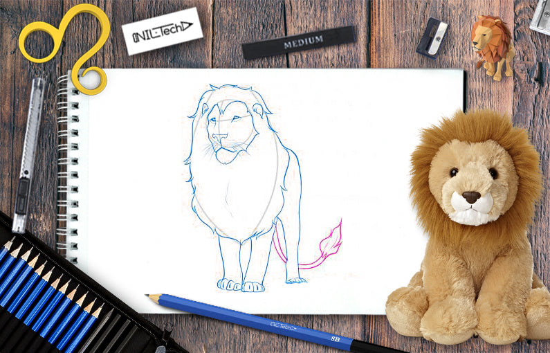 How to draw Lion step by step tutorial
