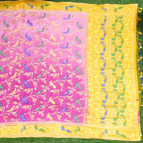 Pure Georgette Birds of Paradise Tri Color Banarasi Saree - Khinkhwab