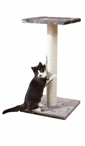 Espejo Scratching Post Trixie