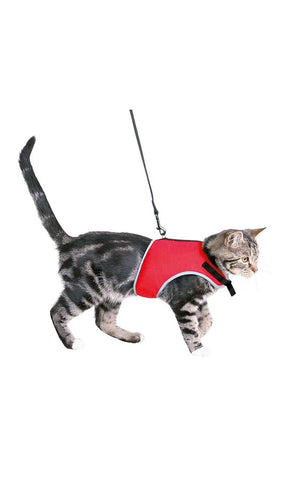 Trixie Soft Harness with Leash Cat Accessories Trixie