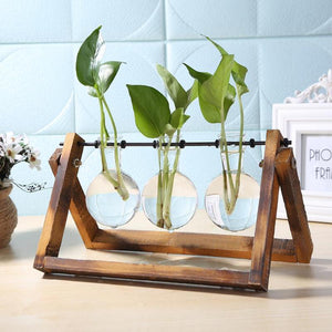Glass and Wood Vase Planter Hydroponics Plant Hanging Pots with Wooden Tray