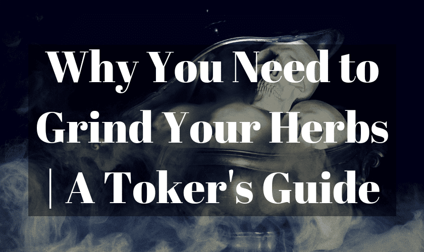 Is Grinding Herbs Necessary? | A Toker's Guide