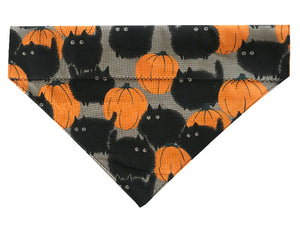 Black Cats and Pumpkins - Reversible