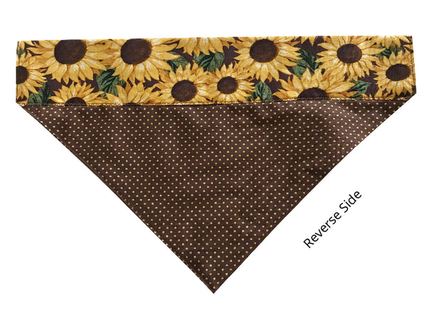 Brown and Gold Polka Dot Sunflowers - Reversible