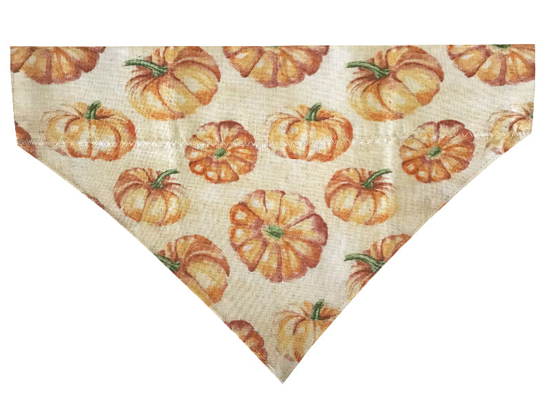 Cream Pumpkins - Reversible