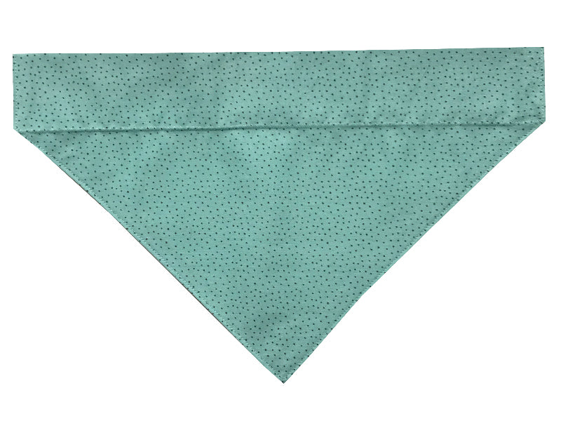 Teal with Brown Polka Dots