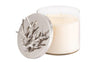 Michael Aram Ocean Reef Candle
