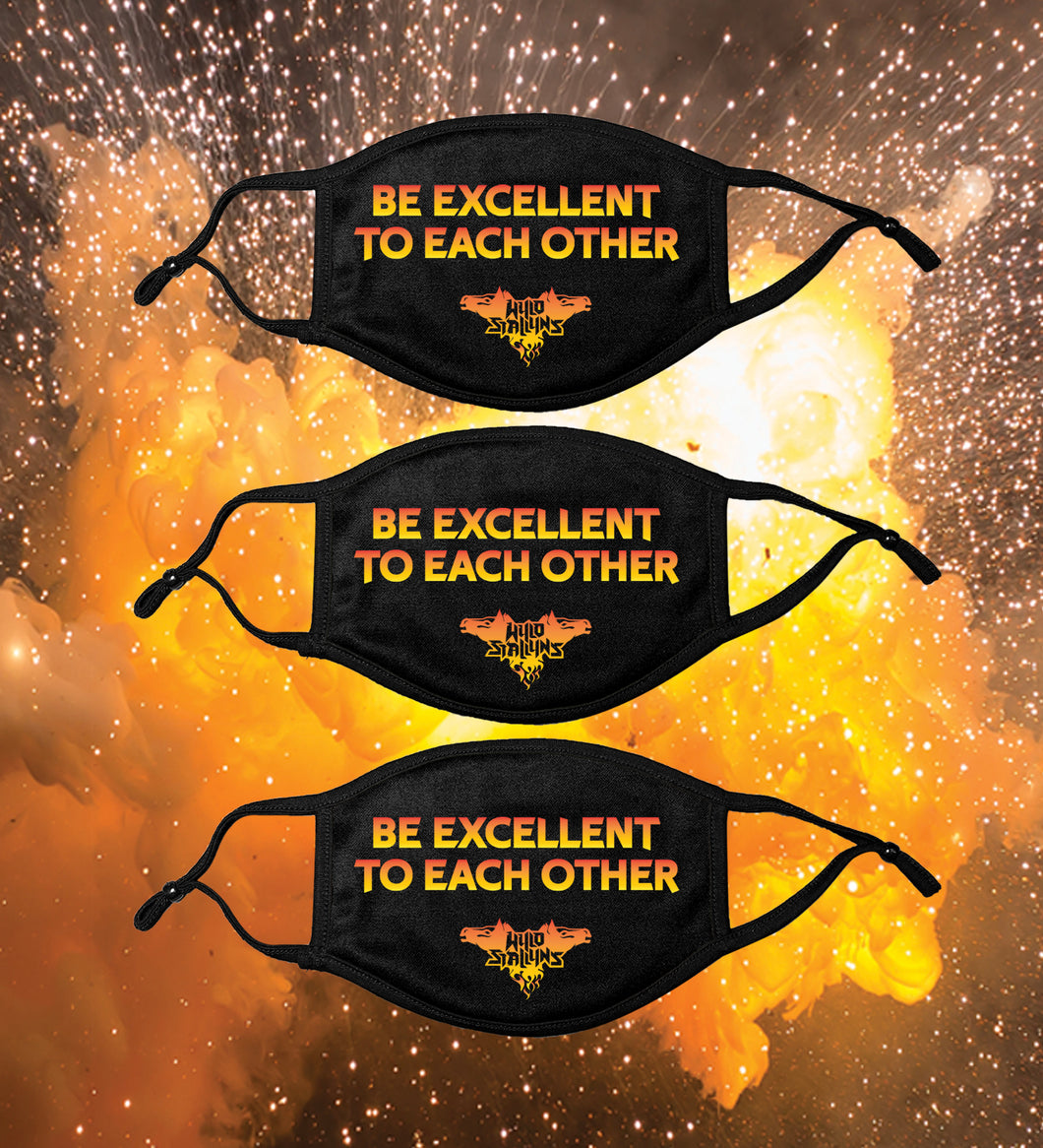 ALL NEW! 3 PACK -KIDS Be Excellent To Each other! Face Mask