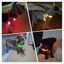 Load image into Gallery viewer, LED Nylon Dog Harness-FREE SHIPPING (TODAY ONLY)